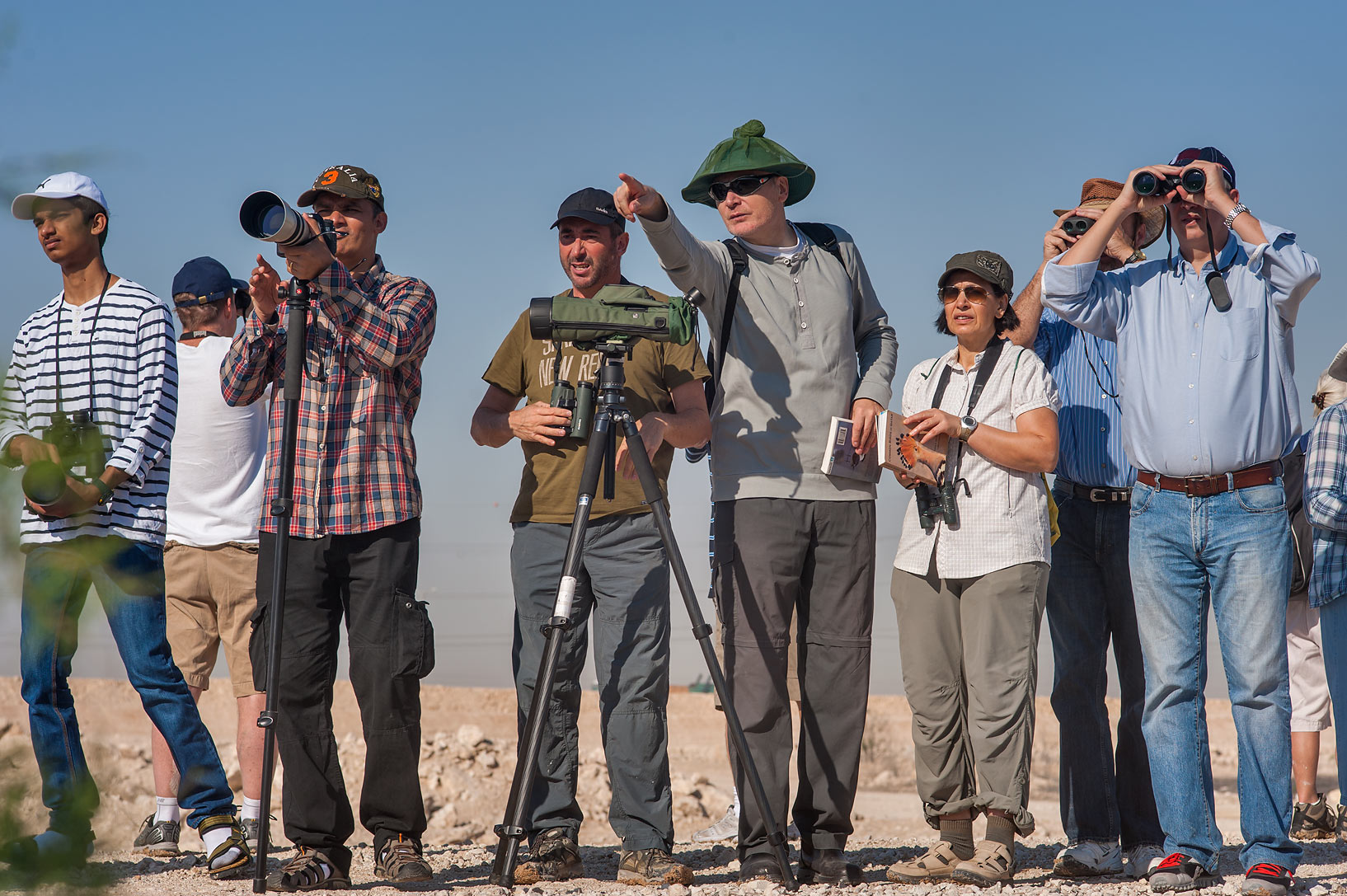 Group of birdwatchers from QNHG (Qatar Natural...treatment ponds. Doha, Qatar
