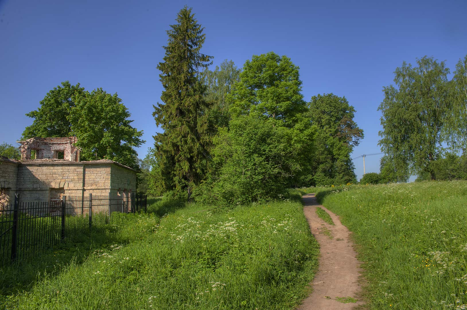 Meadow behind Paultry Farm. Gatchina, south from St.Petersburg, Russia