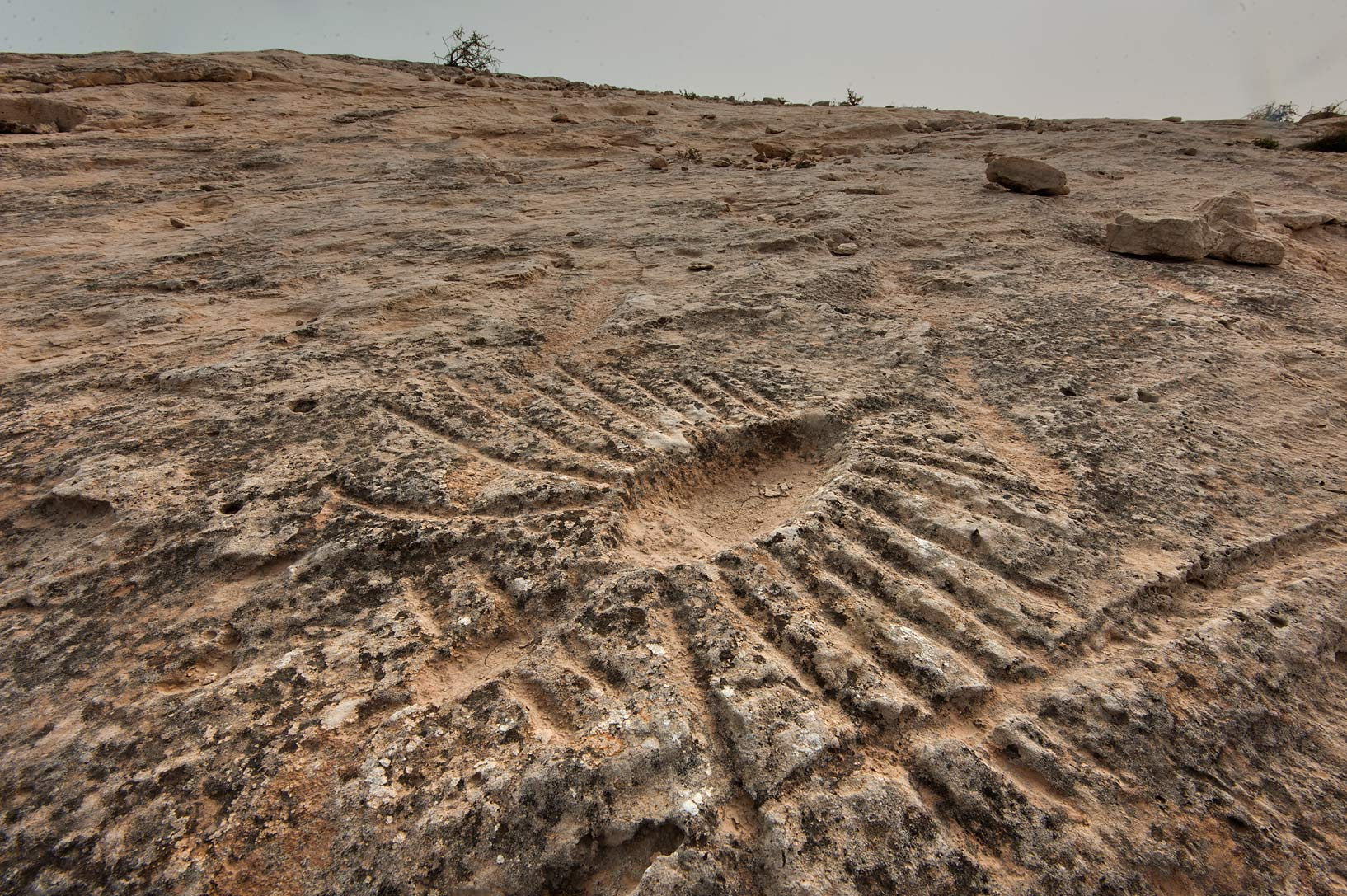Rock carvings (stone engravings, petroglyphs) of...site, on north-eastern coast. Qatar