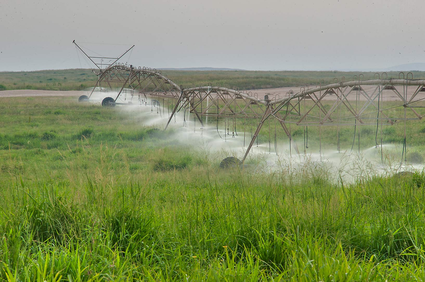 Watering a field on Green Circles (center-pivot...in Irkhaya (Irkaya) Farms. Qatar