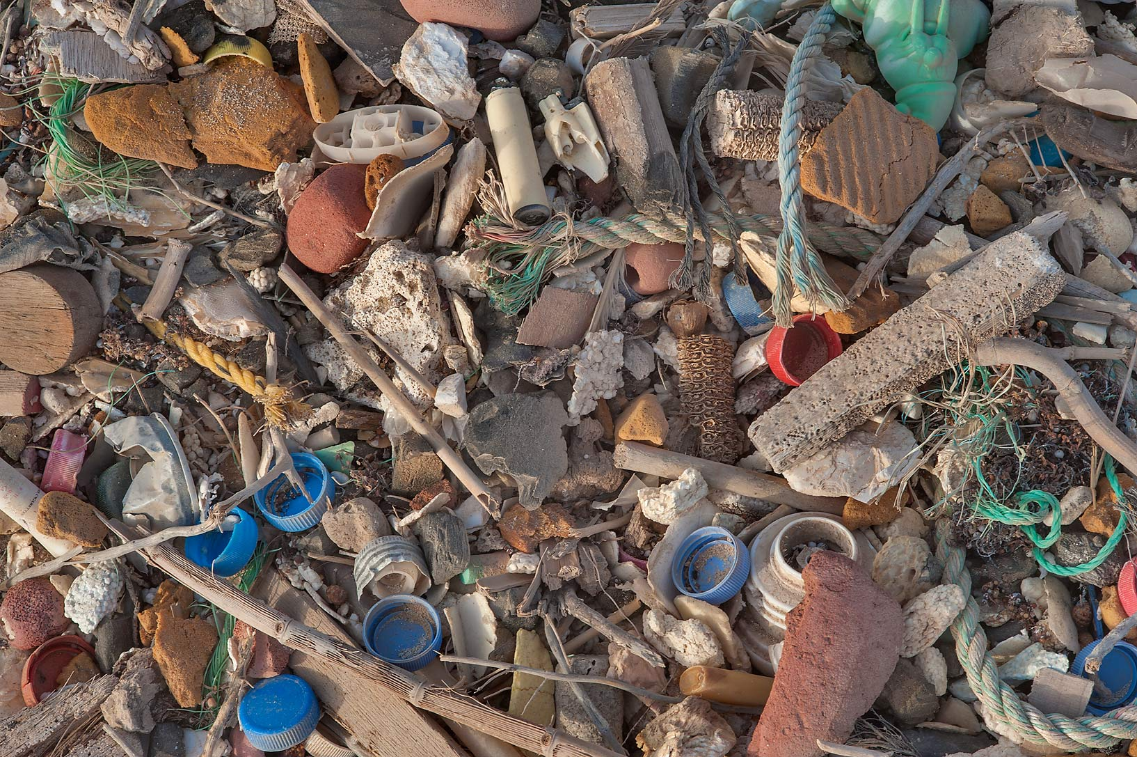 Marine debris washed up on shore below Jebel Fuwairit. Northern Qatar
