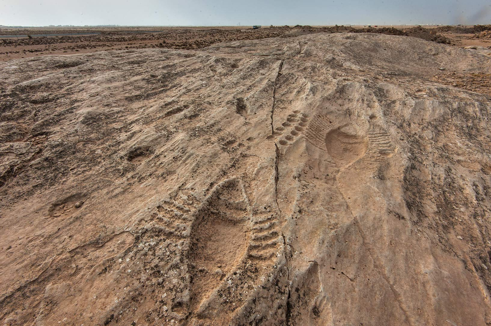 Stone engravings (petroglyphs) on a rocky ridge...site, on north-eastern coast. Qatar