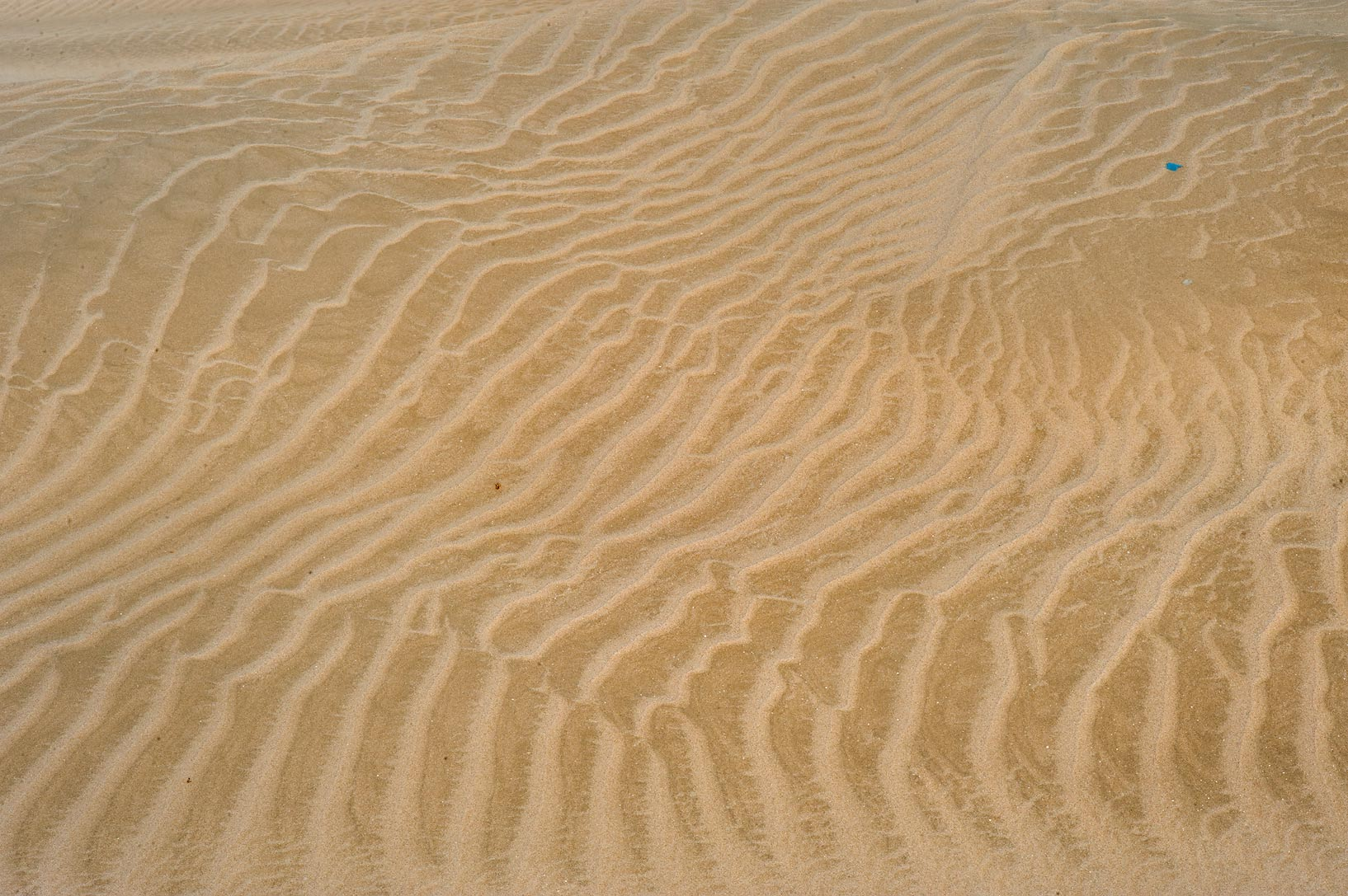Sand ripples near Sealine Beach Resort near Mesaieed. Southern Qatar