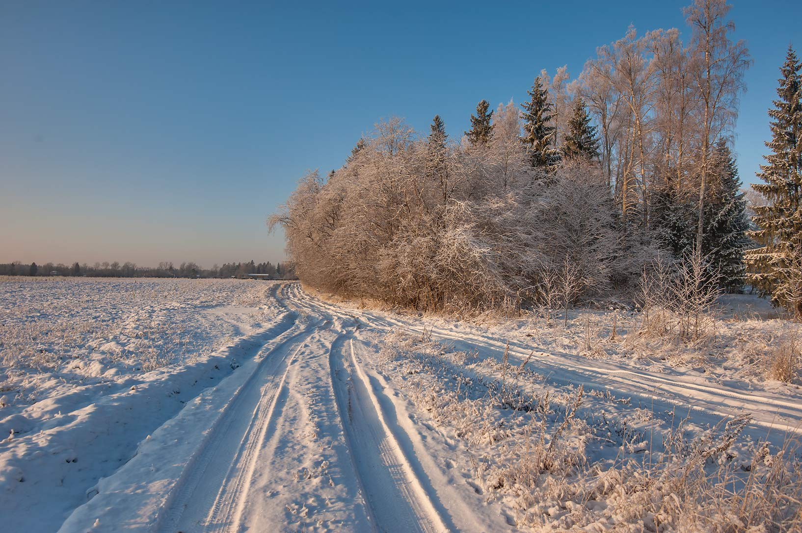 Snowy fields near Griaznovka River springs in...District of Leningrad Region, Russia