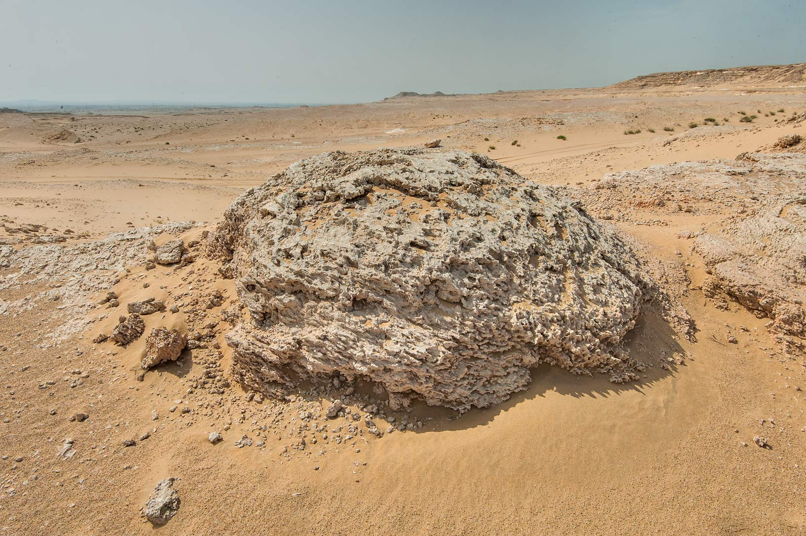 Dome like fossilised intertidal stromatolites...an Nakhsh) in south-western Qatar