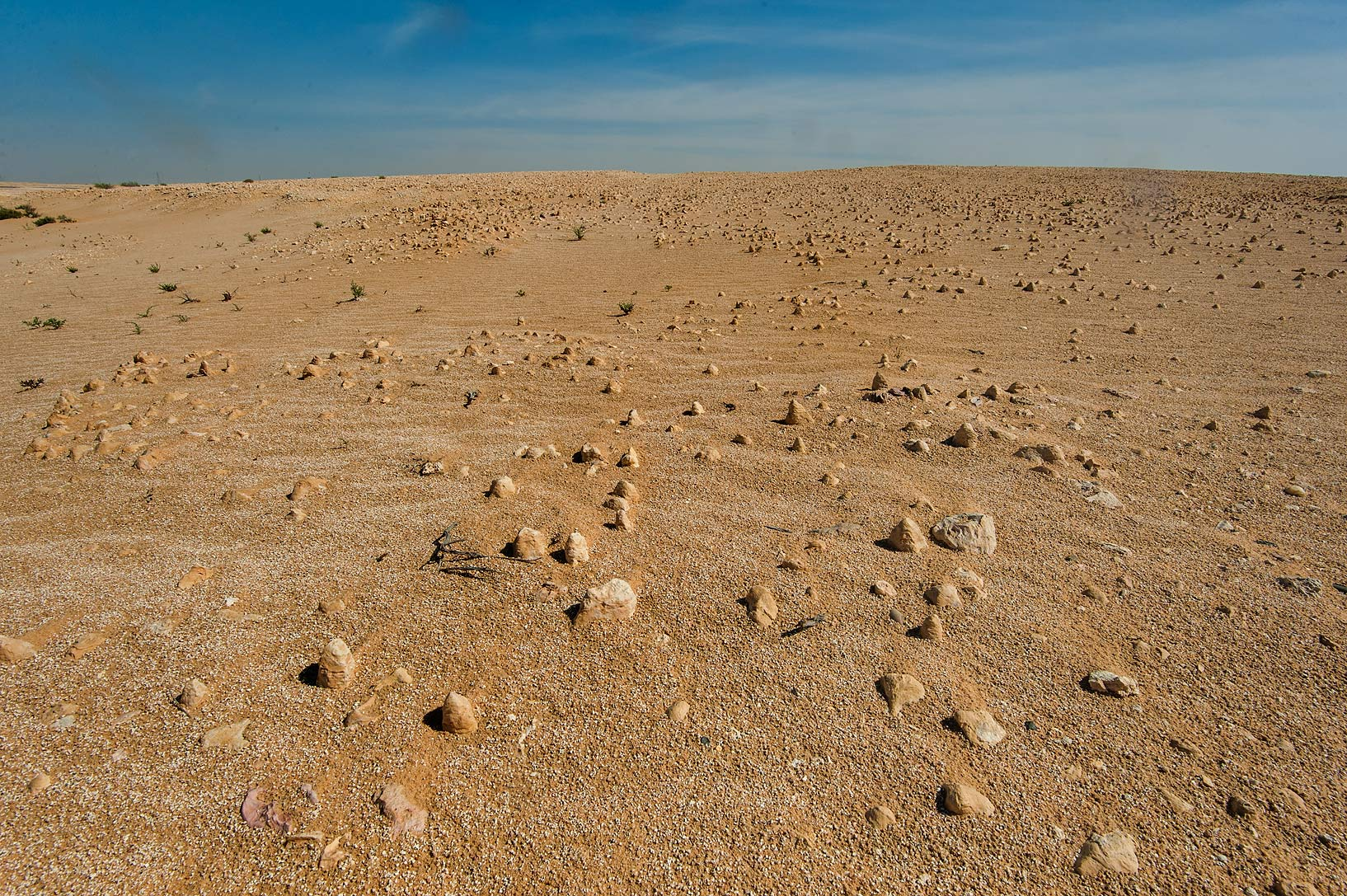 Conical fossilized stromatolites (marine microbs...Jebel Al-Nakhsh in south-western Qatar