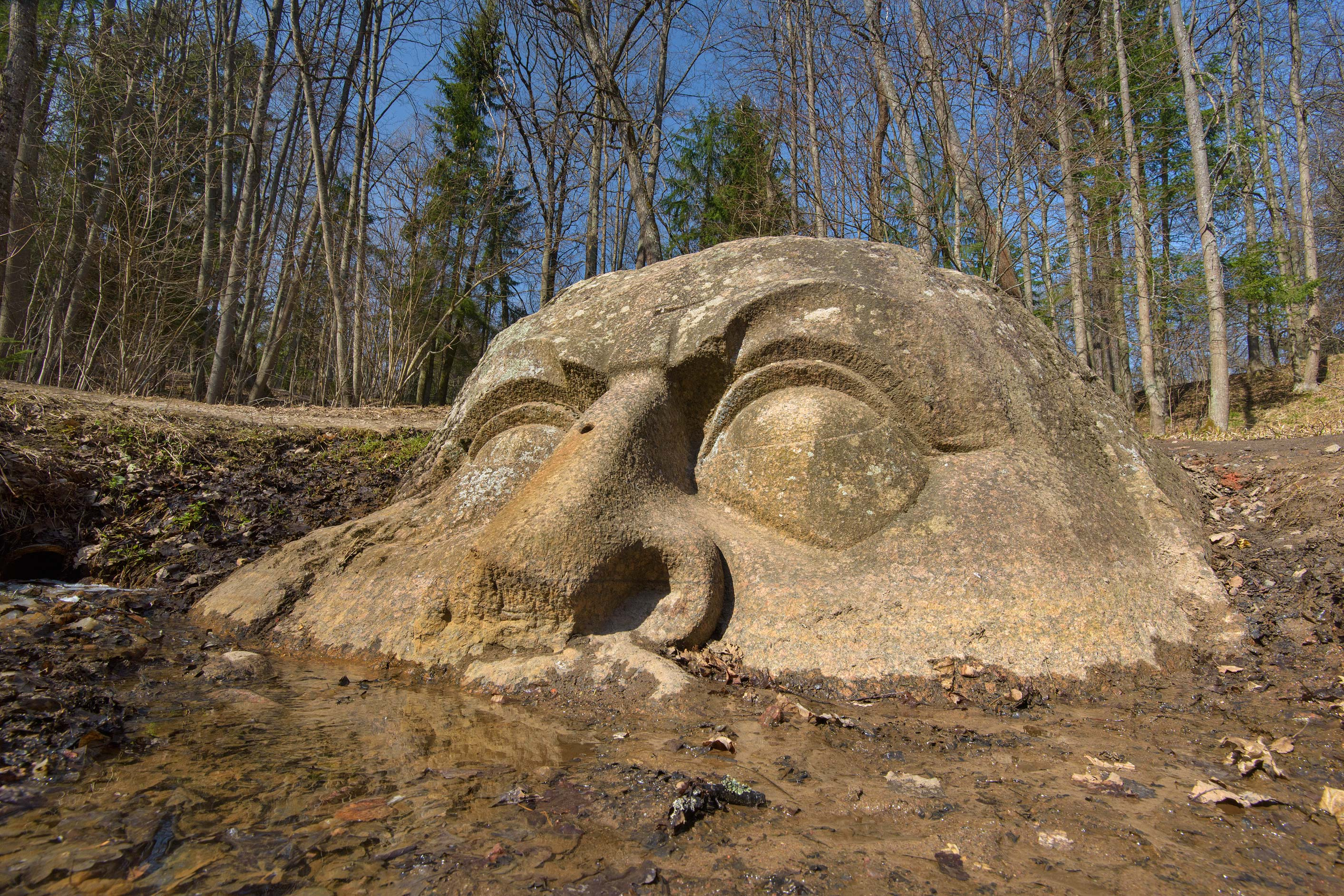 Low angle view of the stone head in Sergievka...west from St.Petersburg, Russia