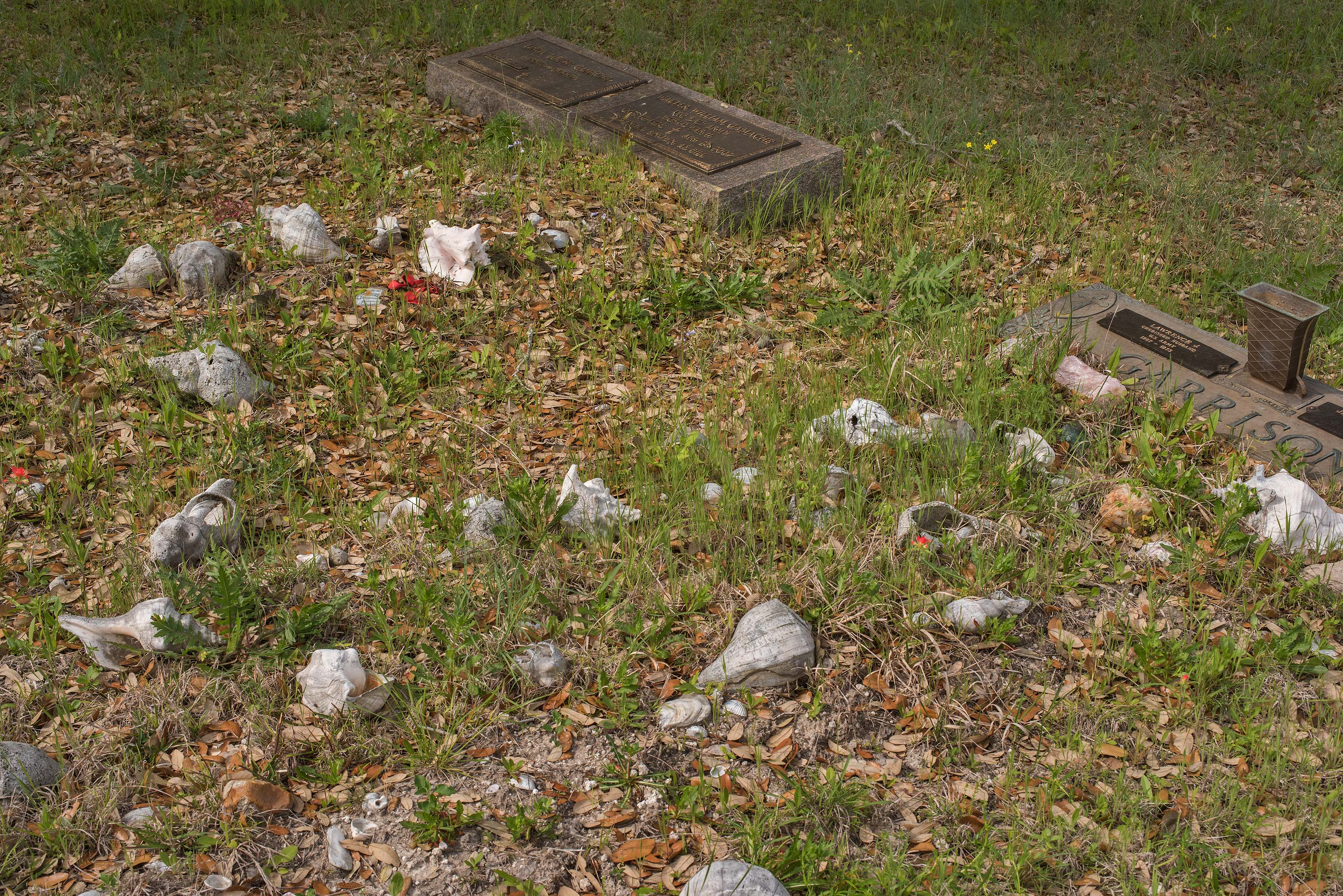 Sea shells on tombs in Christian Cemetery. Burton, Texas