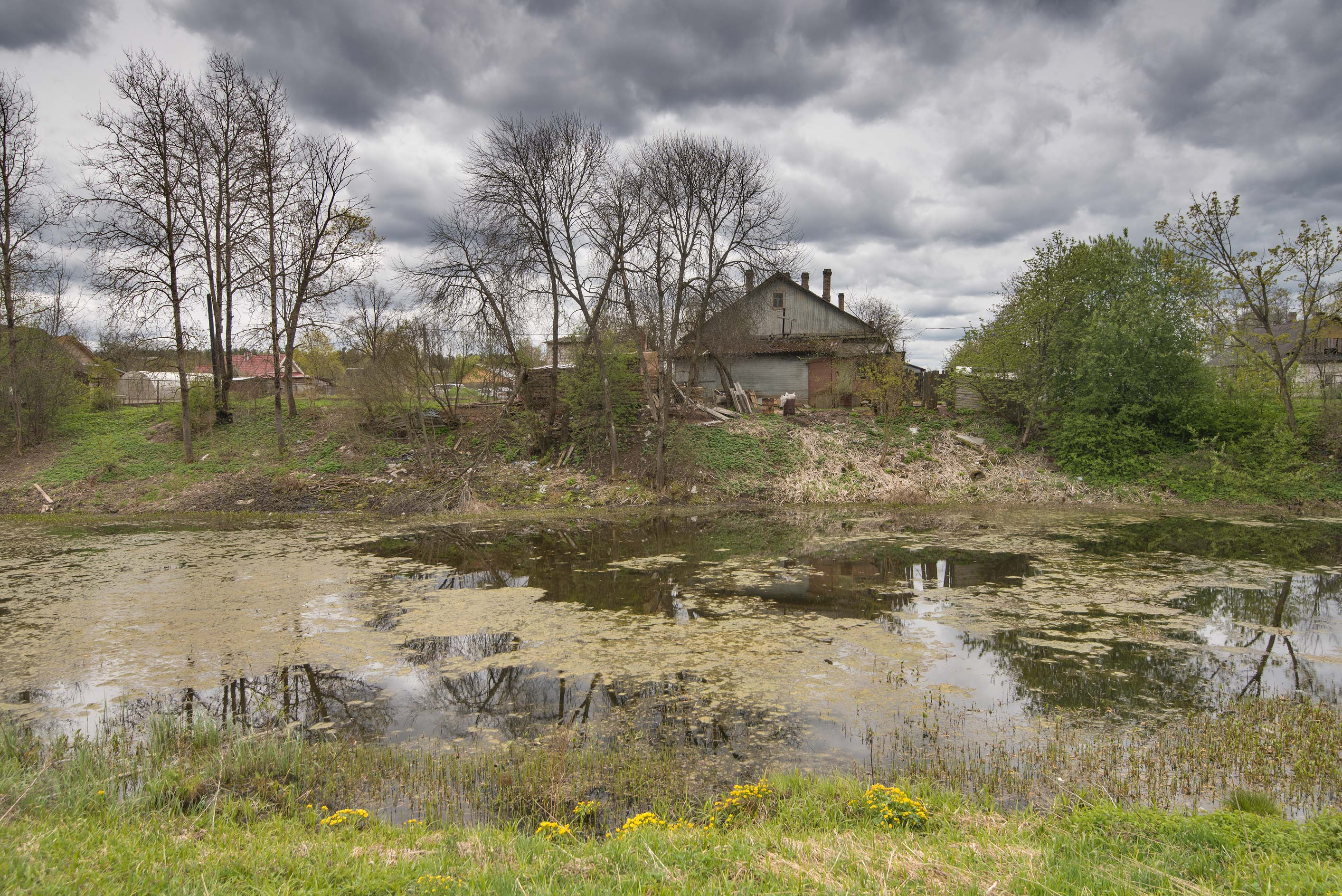 Old pond opposite to Mansion of Rotkirkh-Lelong near Kingisepp. Russia
