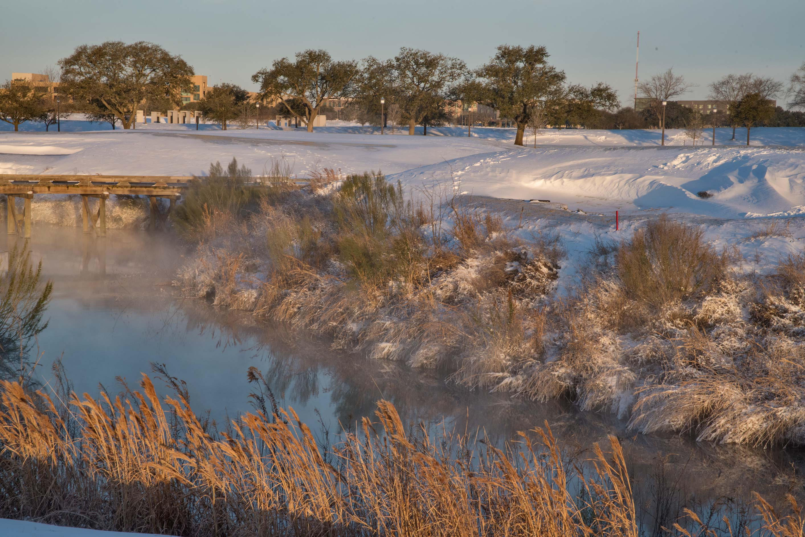 Creek at sunrise on a golf course on campus of...M University. College Station, Texas